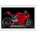Panigale 1299 S/R